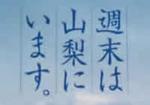 【写真1】紙袋