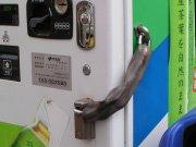 自動販売機の鎖